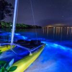 Почему вода на побережье в Австралии стала такого необычного цвета?