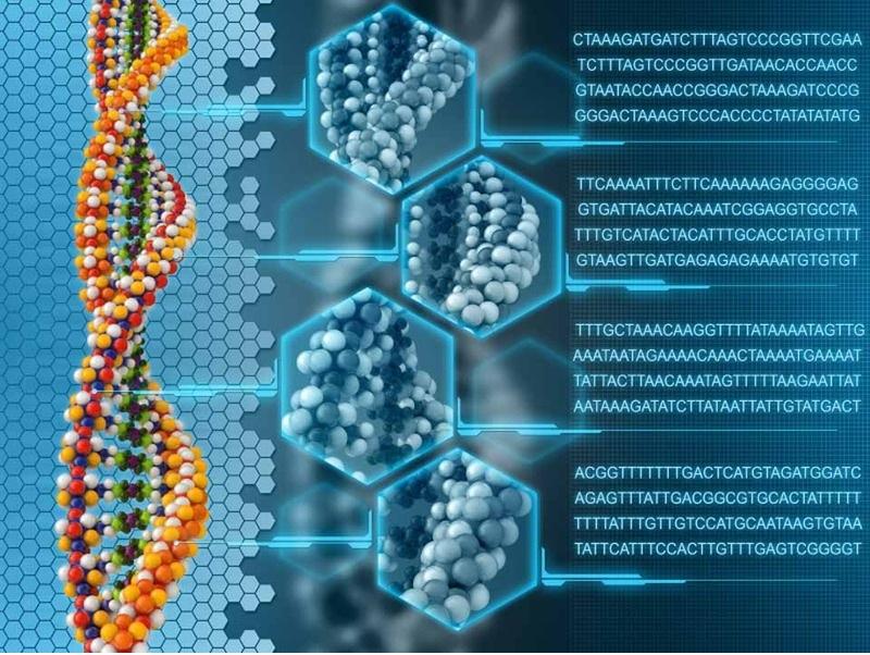 Жесткий диск на основе ДНК