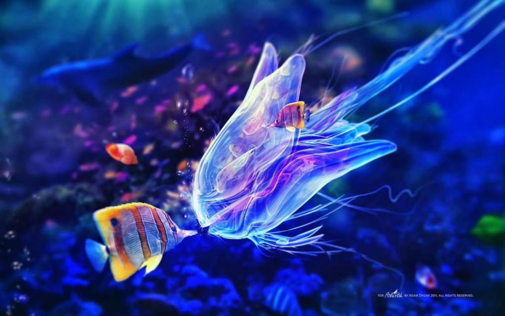 подводный мир: интересное видео