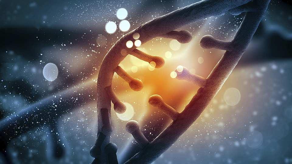 страшные тайны ДНК