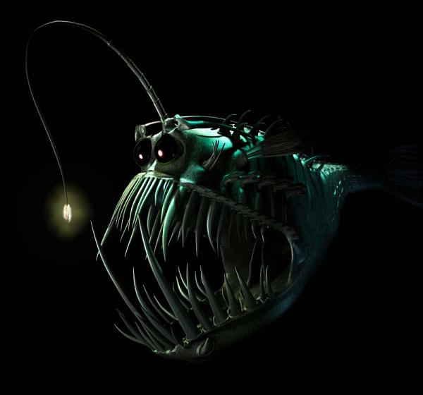 интересные факты о рыбах - удильщик