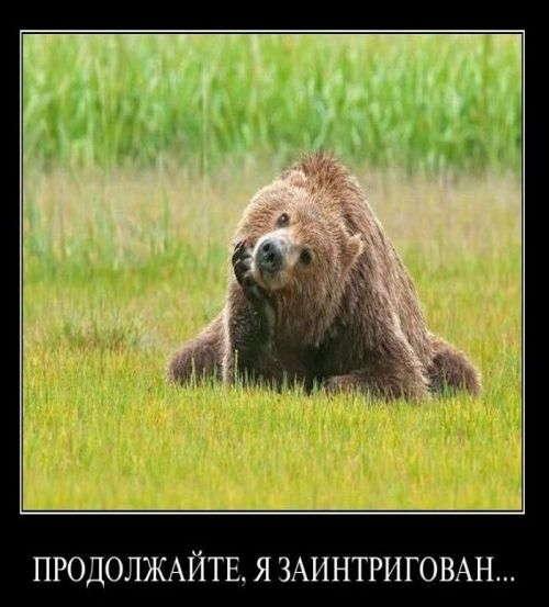 интересные факты о животных России