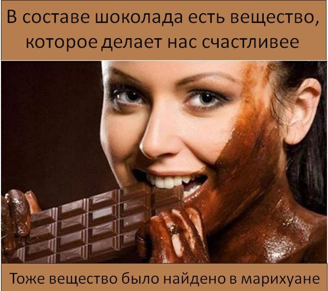 Факт дня о шоколаде