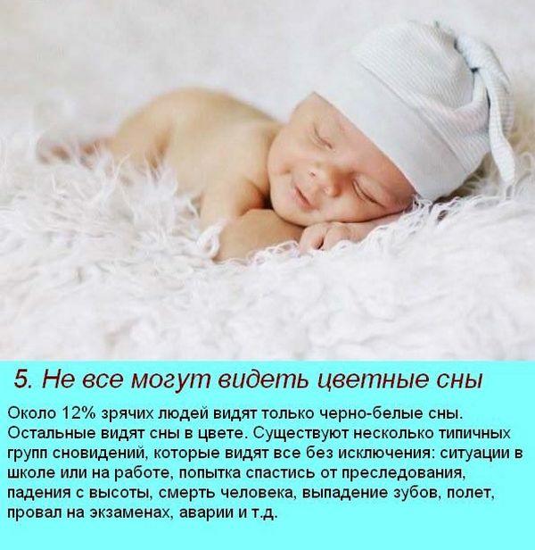 интересные факты о сне 2