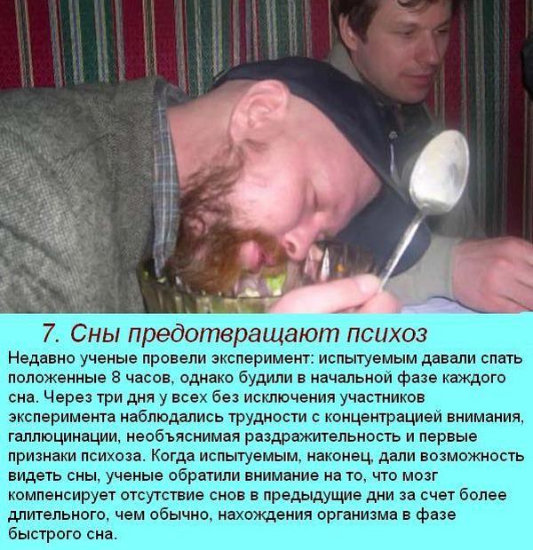 интересные факты о сне 4