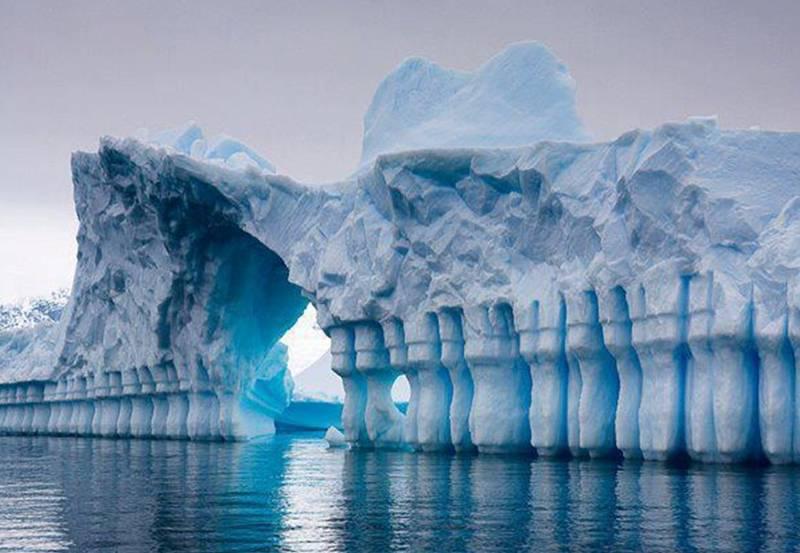 Антарктида интересные факты