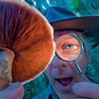 интересные факты о грибах