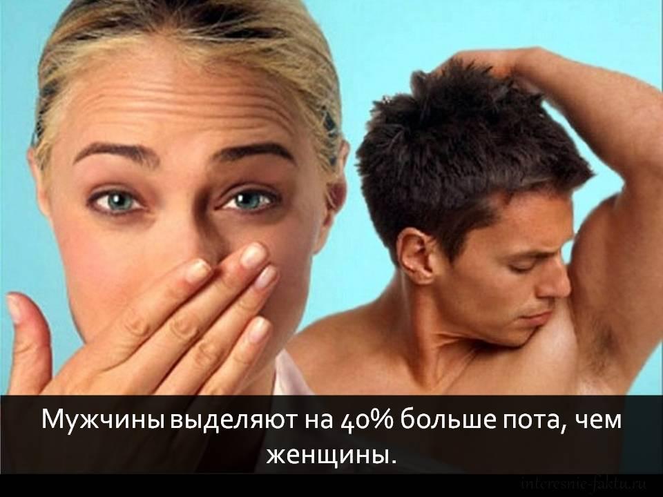 Факты: мужчины и женщины 2