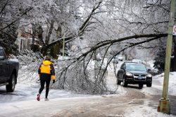 Циклон оставил без электричества города на востоке Канады
