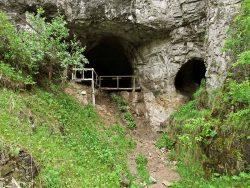 В Денисовой пещере разные виды людей совпали по времени