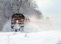 Поезд со 183 пассажирами врезался в дерево