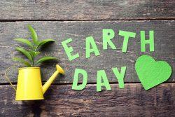 Что такое День Земли и когда его отмечают?